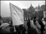 Demonstrations-06